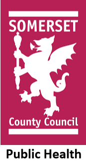 Somerset County Council Public Health